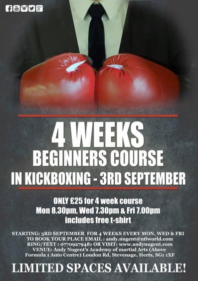 kickboxing beginners course
