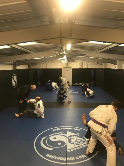 BJJ lunch time class