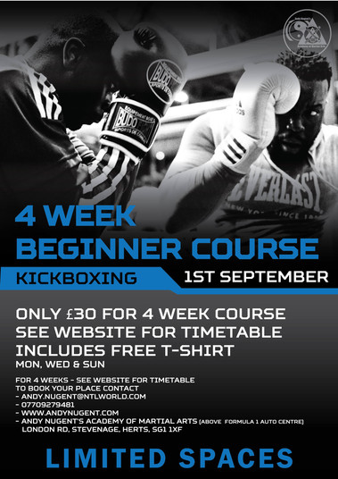 Adult kickboxing course