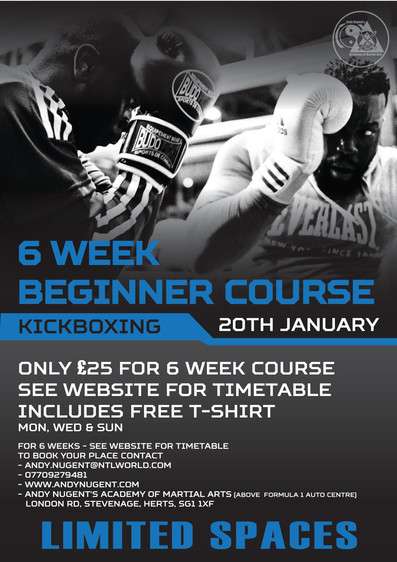 beginners kickboxing course
