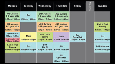 MMA BJJ classes