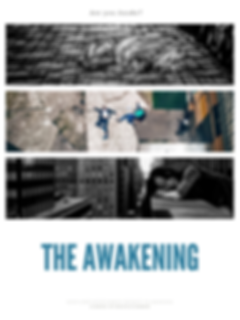 Are you AWAKE_.png