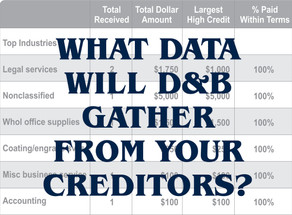 What Data D&B Will Gather From Your Vendors