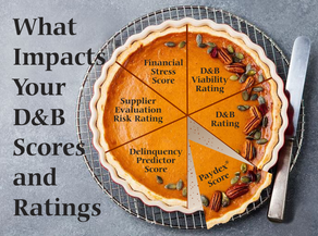 What factors impact D&B scores and ratings?