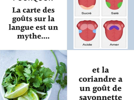 La carte des goûts sur la langue est un mythe