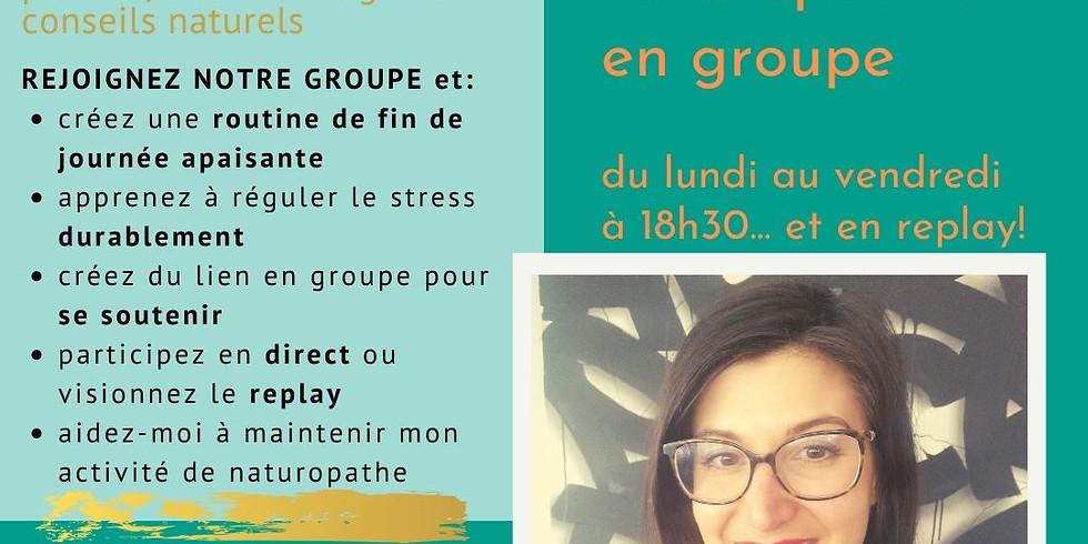 Zen et en forme avec la naturopathie: Accompagnement de groupe