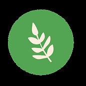 Naturopathie_Plan de travail 1.png