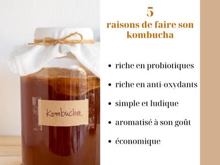 5 bonnes raisons de faire son Kombucha