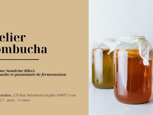 Atelier fermentation: le kombucha