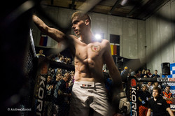 At the Tigers' Den: fight days