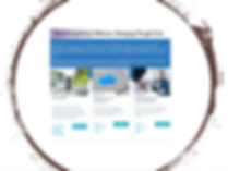 Webinars graphic.png
