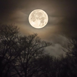Full Moons 2019: What's Left to Come, by Alejandra A. Fernandez