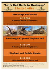 Limited Buffalo and Elephant hunts available in Big 5 area