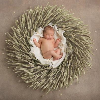 Newborn Fine Art Photography