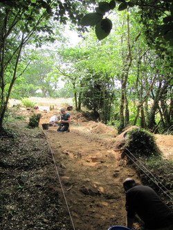 Trench 1  looking W