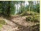 Hillfort of Ten Oaks Wood, Roborough