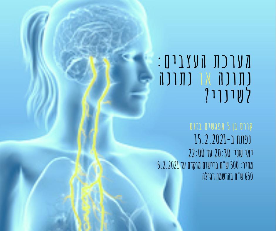 מערכת העצבים נתונה או נתונה לשינוי.png