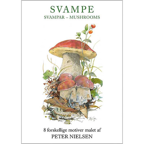 Mushrooms Card Folder w/8 Note Cards