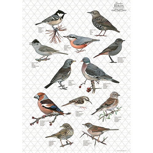 Grey Birds Tea Towel