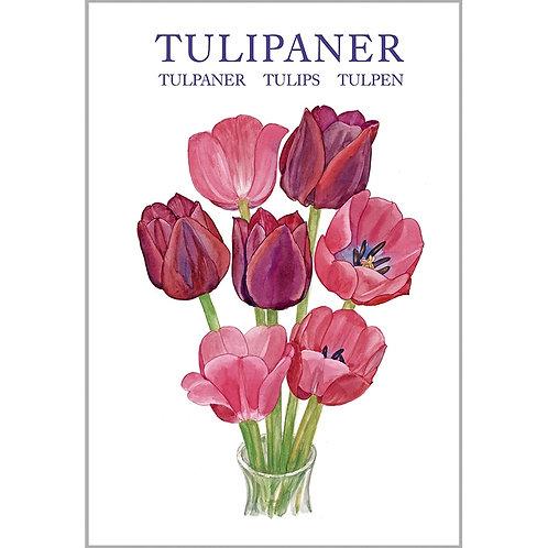 Tulips Card Folder w/8 Note Cards