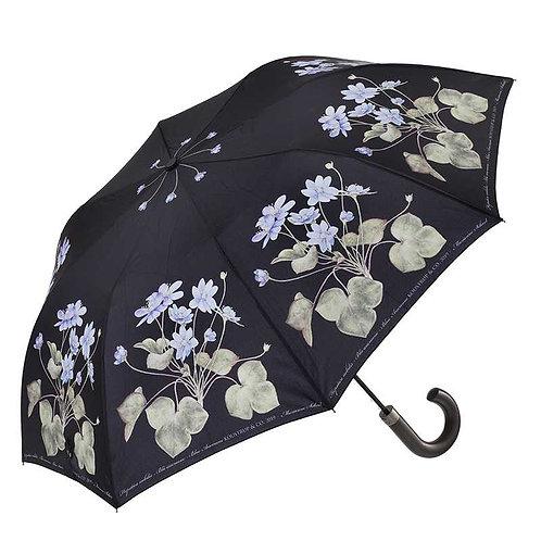 Blue Anemone Umbrella