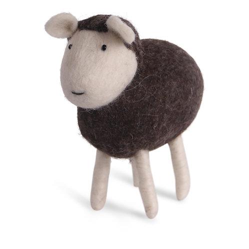 Brown Sheep (MIN 2)