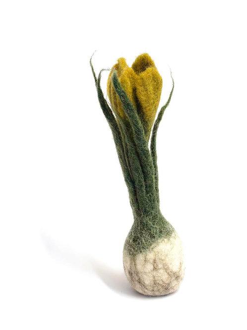 Ochre Flower Bulb (MIN 4)