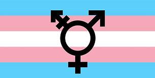Trans-flag-15-1024x512.jpg