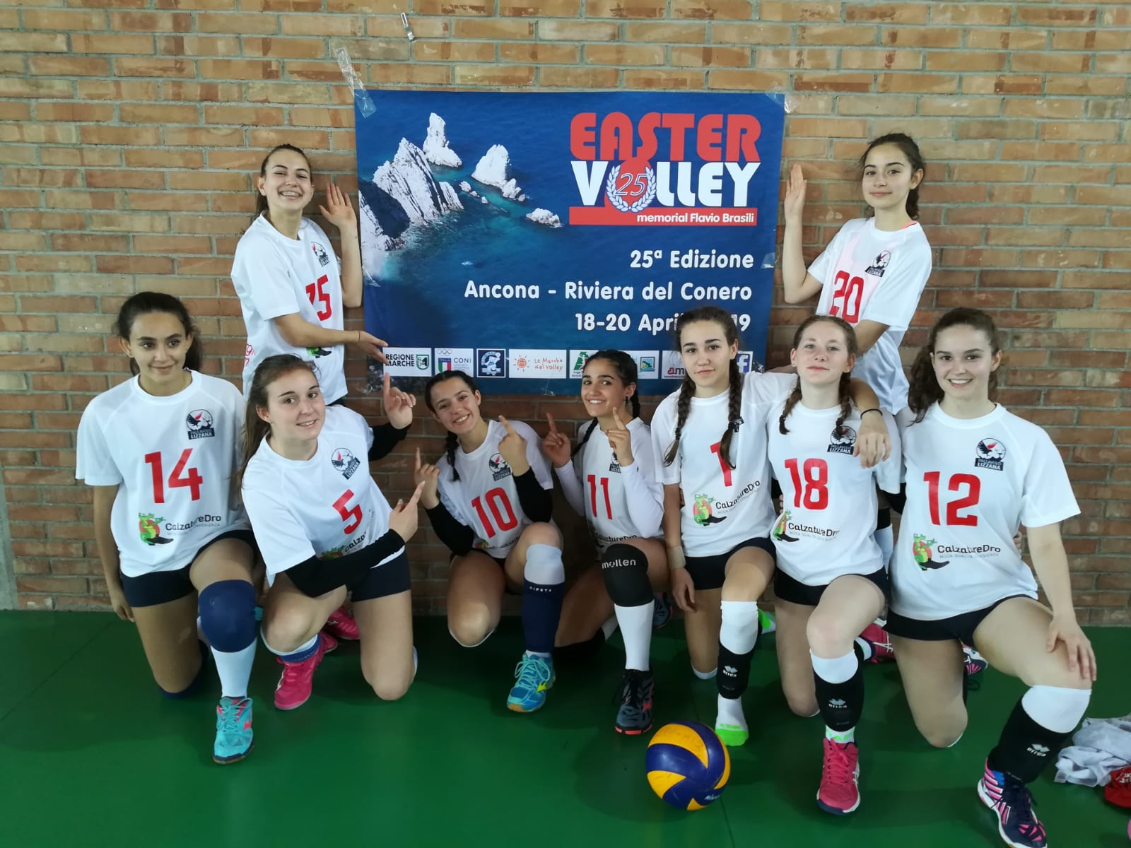 Ester Volley 4