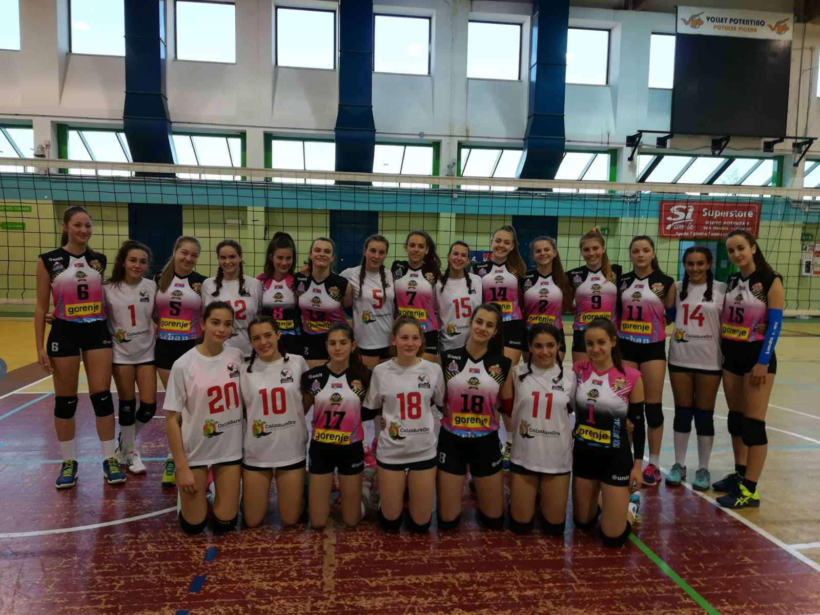Ester Volley 7