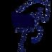 logo nastasia dressage_1_1_1.png
