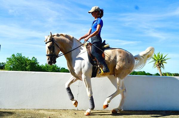 piaffe cheval
