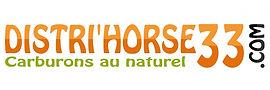 logo-dh33-1056x352.jpg