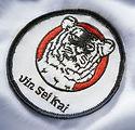 St Albans Karate.jpg