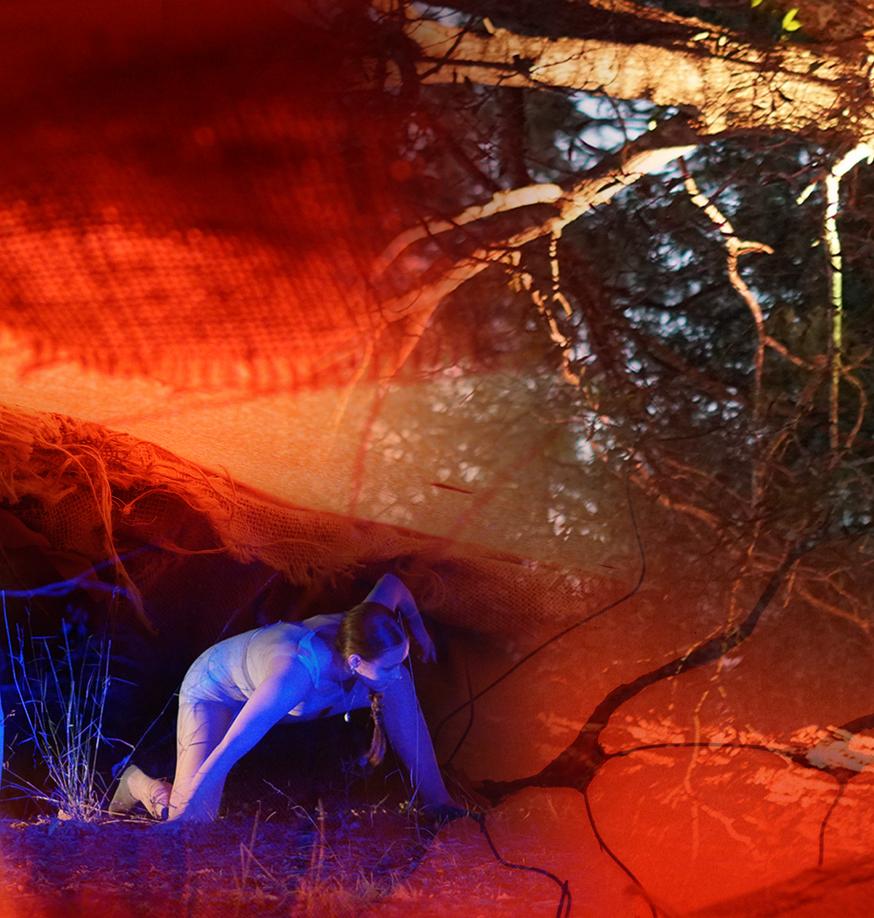 Ravaging Oblivion collage by Isabella Catenaro