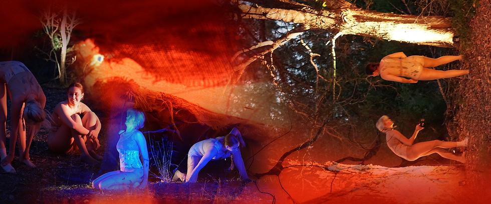 ravaging oblivion collage.png