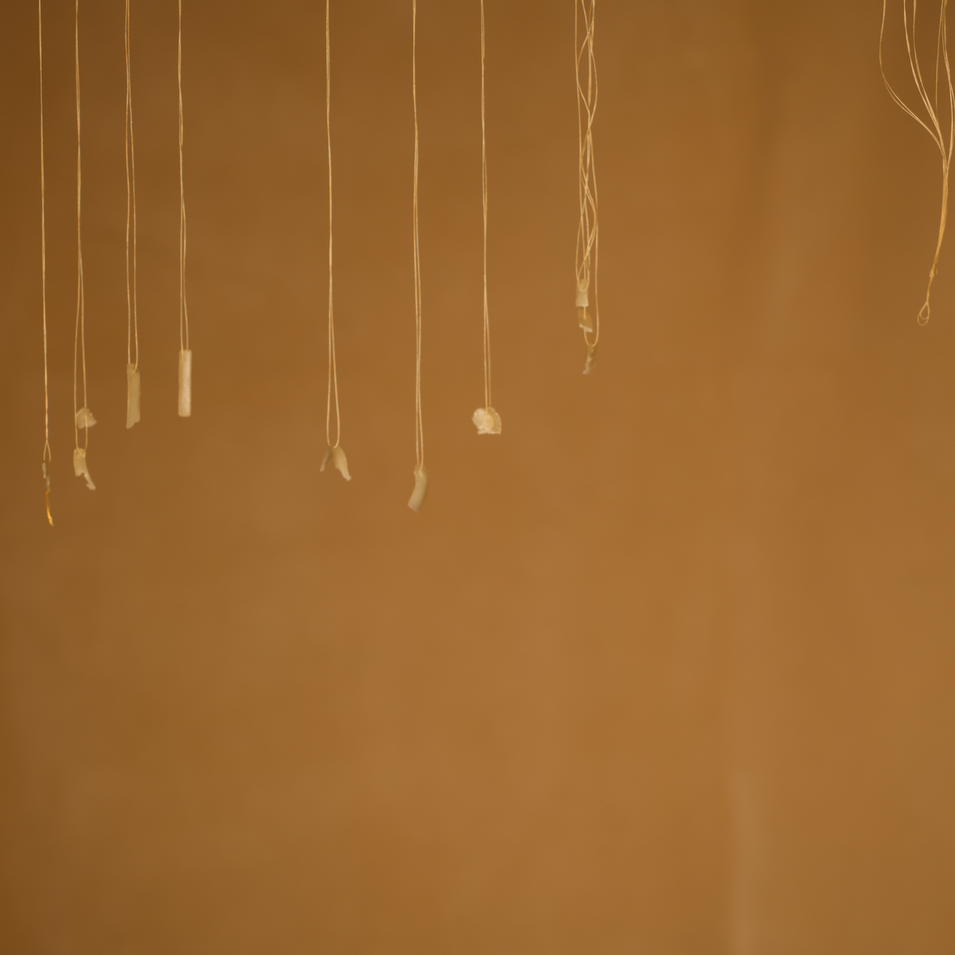 photographic documentation depicts the threads that remain after the artist has chewed each suspended letter off of them. some bite-marks are evident on the remaining letters, but most of remaining strands have nothing left. some of the strands are tangled together while others hang almost vertically downwards from the top of the frame.