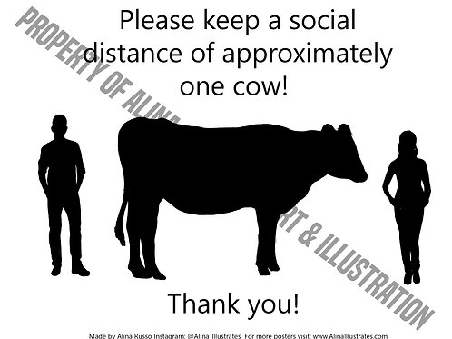 Social Distance One Cow