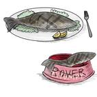 Fish Food .jpg