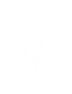 Business card icon.png
