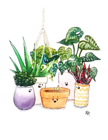 Happy Birthday Sprout!.jpg