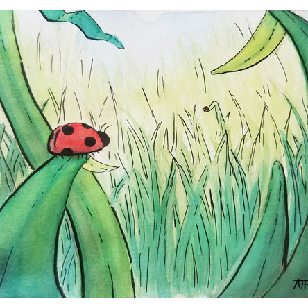 Social Distancing Lady Bugs