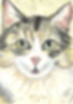 Cat painting pet portraits pastel journey
