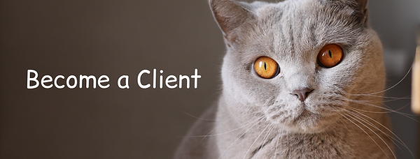 Become a Client (1).png
