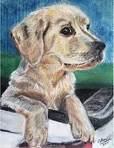 Stark painting pet portrait