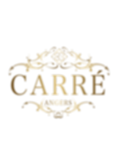 logo carré angers or osr openschoolrecor