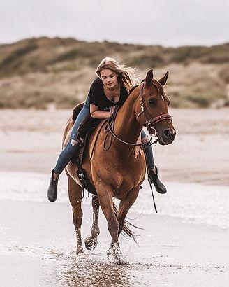 phili loves horses - Freiheitshelden