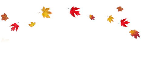 Transparent-Fall-Leaves-Border-PNG.png