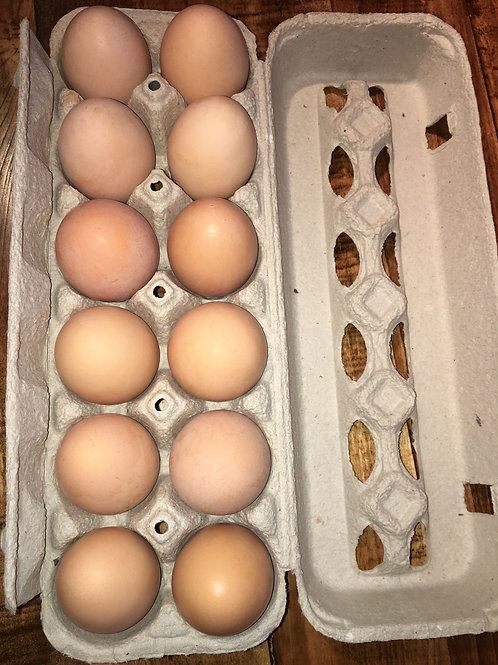 1 dozen pasture raised eggs