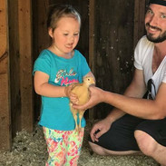 Pasture Raised Chickens, Erie PA